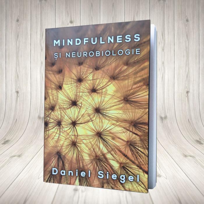 Mindfulness și neurobiologie