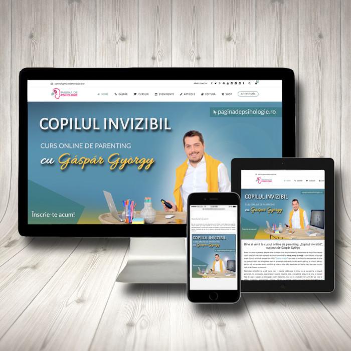 Curs online - Copilul Invizibil