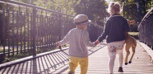 dezvoltarea-abilitatiilor-socio-emotionale-sau-cum-sa-ne-conectam-la-noi-insine-si-la-cei-din-jur